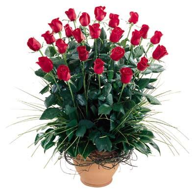 Batman uluslararası çiçek gönderme  10 adet kirmizi gül cam yada mika vazo