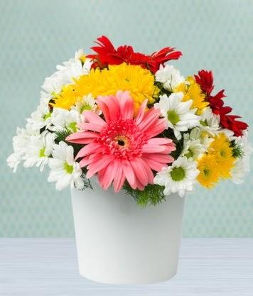 Seramik Vazoda Gelbera ve Papatya  Batman çiçek gönderme