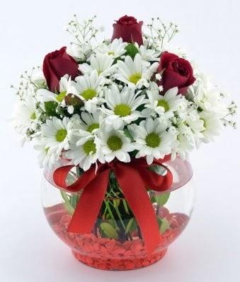 Fanusta 3 Gül ve Papatya  Batman internetten çiçek satışı