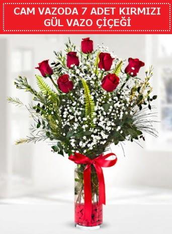 Cam vazoda 7 adet kırmızı gül çiçeği  Batman çiçek gönderme sitemiz güvenlidir