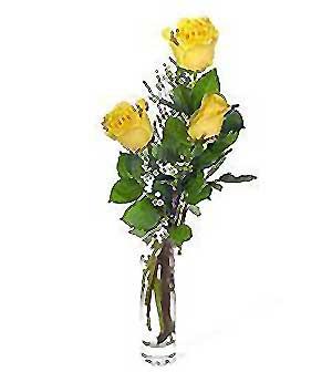 Batman internetten çiçek siparişi  3 adet kalite cam yada mika vazo gül
