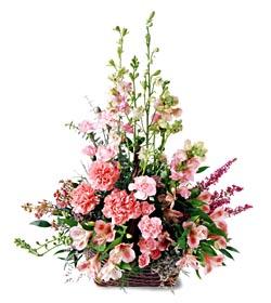 Batman ucuz çiçek gönder  mevsim çiçeklerinden özel