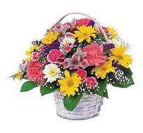 Batman çiçek , çiçekçi , çiçekçilik  mevsim çiçekleri sepeti özel