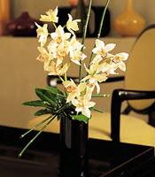 Batman çiçekçiler  cam yada mika vazo içerisinde dal orkide