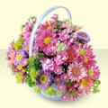 Batman yurtiçi ve yurtdışı çiçek siparişi  bir sepet dolusu kir çiçegi  Batman çiçek gönderme sitemiz güvenlidir