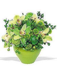 cam yada mika vazoda 5 adet orkide   Batman online çiçekçi , çiçek siparişi