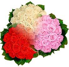 3 renkte gül seven sever   Batman çiçek , çiçekçi , çiçekçilik