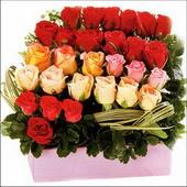 15 adet renkli gül ve cam   Batman çiçekçi mağazası