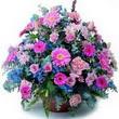 karisik mevsim kir çiçekleri  Batman çiçek gönderme sitemiz güvenlidir