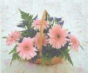gerbera çiçeklerinde sepet   Batman çiçek yolla