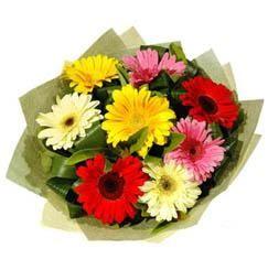 9 adet karisik gerbera demeti  Batman çiçek mağazası , çiçekçi adresleri
