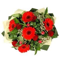 Batman ucuz çiçek gönder   5 adet kirmizi gül 5 adet gerbera demeti