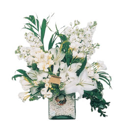 Batman internetten çiçek siparişi  sadece beyazlardan olusmus mevsim cam yada mika tanzim