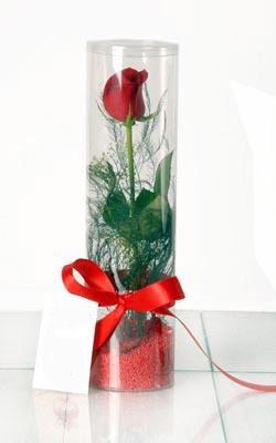 Batman çiçek yolla  Silindir vazoda tek kirmizi gül