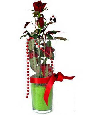 Batman online çiçek gönderme sipariş  Cam yada mika içerisinde 9 adet kirmizi gül - sevdiklerinize özel
