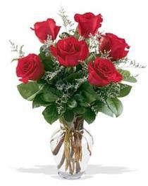 Batman çiçek gönderme sitemiz güvenlidir  7 adet kirmizi gül cam yada mika vazoda sevenlere