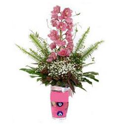Batman hediye çiçek yolla  cam yada mika vazo içerisinde tek dal orkide çiçegi