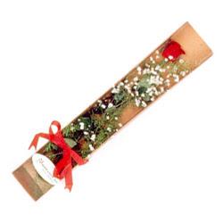 Batman çiçek , çiçekçi , çiçekçilik  Kutuda tek 1 adet kirmizi gül çiçegi