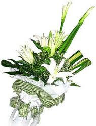 Batman güvenli kaliteli hızlı çiçek  3 dal kazablanka çiçegi ve yesillikler