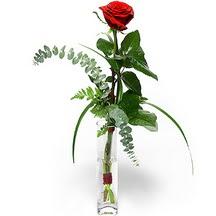 Batman 14 şubat sevgililer günü çiçek  Sana deger veriyorum bir adet gül cam yada mika vazoda