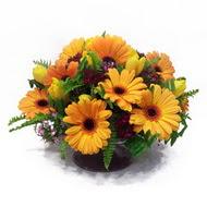 gerbera ve kir çiçek masa aranjmani  Batman çiçek siparişi vermek
