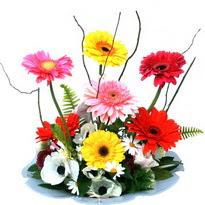 Batman hediye çiçek yolla  camda gerbera ve mis kokulu kir çiçekleri