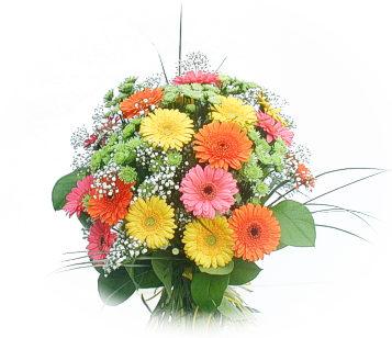 13 adet gerbera çiçegi buketi  Batman online çiçek gönderme sipariş