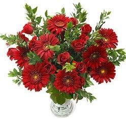 5 adet kirmizi gül 5 adet gerbera aranjmani  Batman hediye çiçek yolla