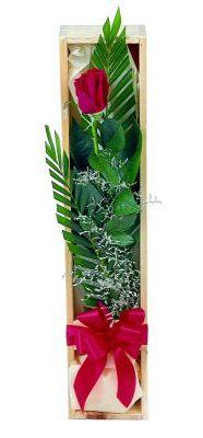 1 adet kutuda kirmizi gül  Batman çiçek gönderme sitemiz güvenlidir