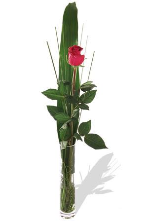 1 adet cam vazo içerisinde kirmizi gül  Batman çiçek , çiçekçi , çiçekçilik