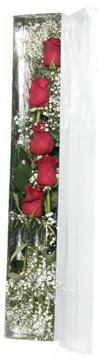 Batman çiçek siparişi sitesi   5 adet gülden kutu güller