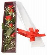 kutu içinde 5 adet kirmizi gül  Batman internetten çiçek siparişi