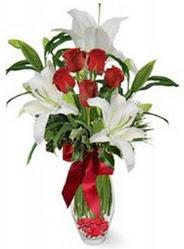Batman çiçek siparişi vermek  5 adet kirmizi gül ve 3 kandil kazablanka