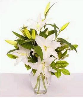 Batman çiçek gönderme  2 dal cazablanca vazo çiçeği