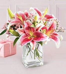 2 dal kazablanka görsel vazosu  Batman çiçek siparişi sitesi
