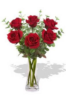 Batman çiçekçi mağazası  6 kırmızı gül vazosu