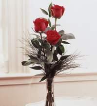 Batman internetten çiçek satışı  Vazoda 3 adet güzel gül