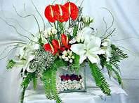 Batman çiçek mağazası , çiçekçi adresleri  Anthurim Kazablanka  gül