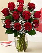 Sevgilime hediye 9 adet 1.ci kalite gül  Batman anneler günü çiçek yolla