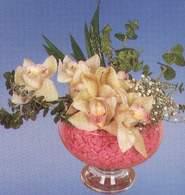 Batman çiçek mağazası , çiçekçi adresleri  Dal orkide kalite bir hediye