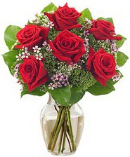 Kız arkadaşıma hediye 6 kırmızı gül  Batman internetten çiçek siparişi