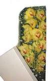 Batman çiçek gönderme  Kutu içerisine dal cymbidium orkide
