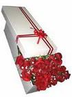 Batman çiçekçi telefonları  11 adet 1.kalite magnum güller