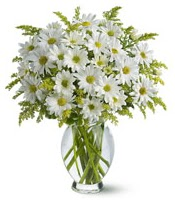 Vazo içerisinde beyaz krizantem çiçekleri  Batman çiçekçi mağazası