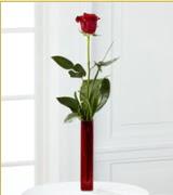 Vazo içerisinde 1 adet kırmızı gül  Batman internetten çiçek siparişi