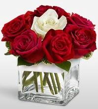 Tek aşkımsın çiçeği 8 kırmızı 1 beyaz gül  Batman uluslararası çiçek gönderme