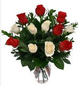 Vazo içerisinde 6 kırmızı 6 beyaz gül  Batman hediye çiçek yolla