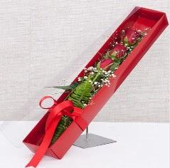 Kutu içerisinde 3 adet kırmızı gül  Batman online çiçek gönderme sipariş