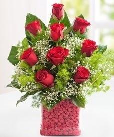Cam içerisinde 9 adet kırmızı gül  Batman internetten çiçek satışı