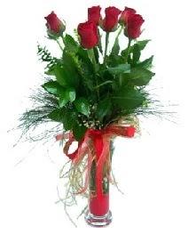 vazo içerisinde 5 kırmızı gül  Batman güvenli kaliteli hızlı çiçek